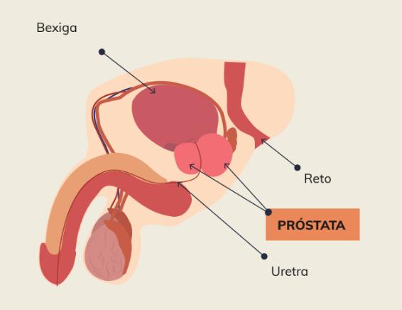 Novembro azul, esclarecimentos sobre o câncer de próstata.